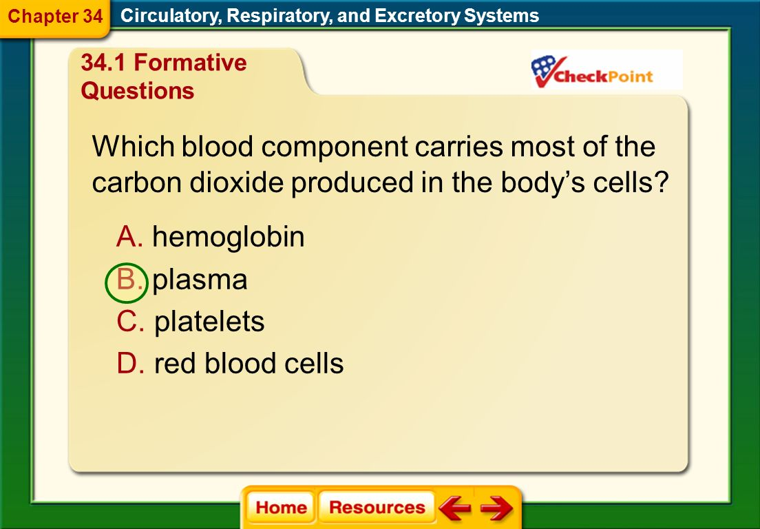 Which blood component carries most of the