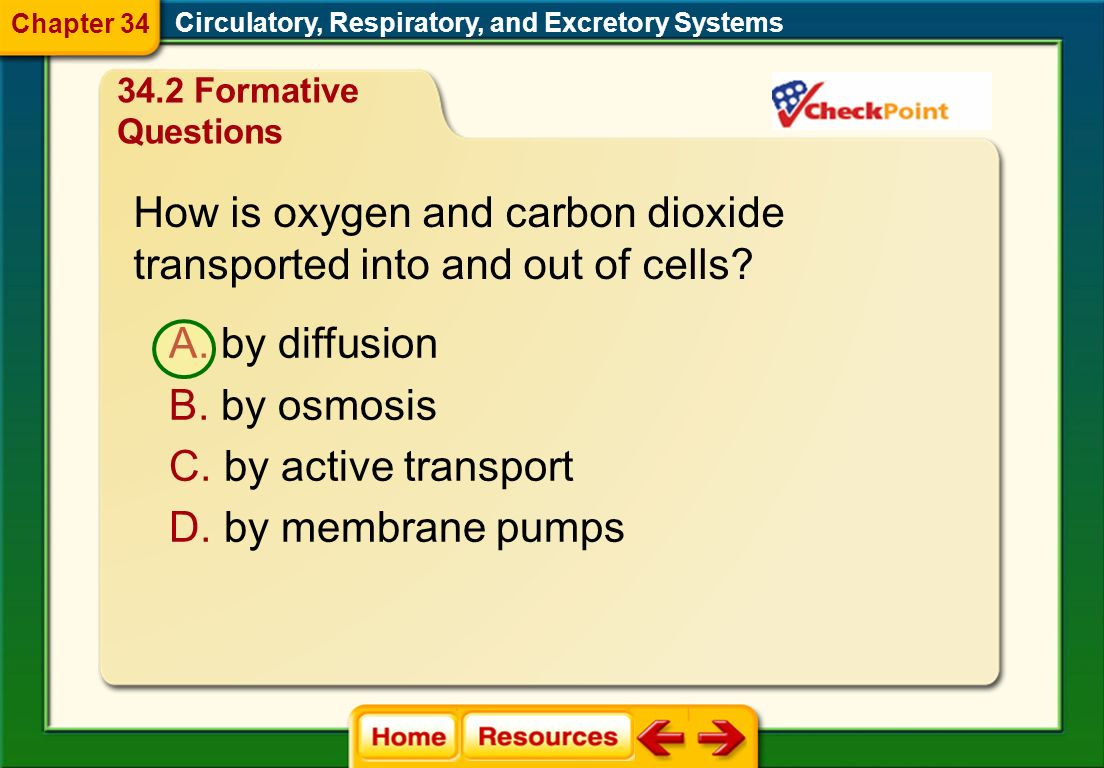 How is oxygen and carbon dioxide transported into and out of cells