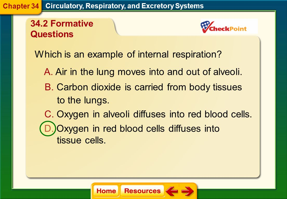 Which is an example of internal respiration