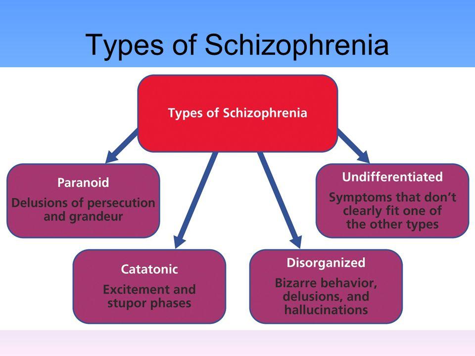 ncp of undifferentiated schizophrenia Entomophagy and coprophagy in undifferentiated schizophrenia anand lingeswaran, vinayak vijayakumar, john dinesh.