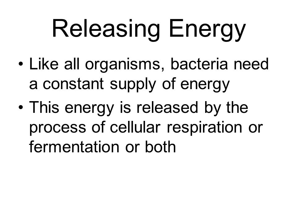 Releasing Energy Like all organisms, bacteria need a constant supply of energy.