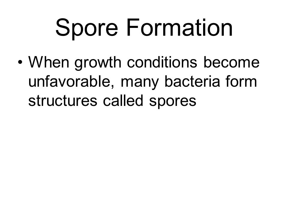 Spore Formation When growth conditions become unfavorable, many bacteria form structures called spores.