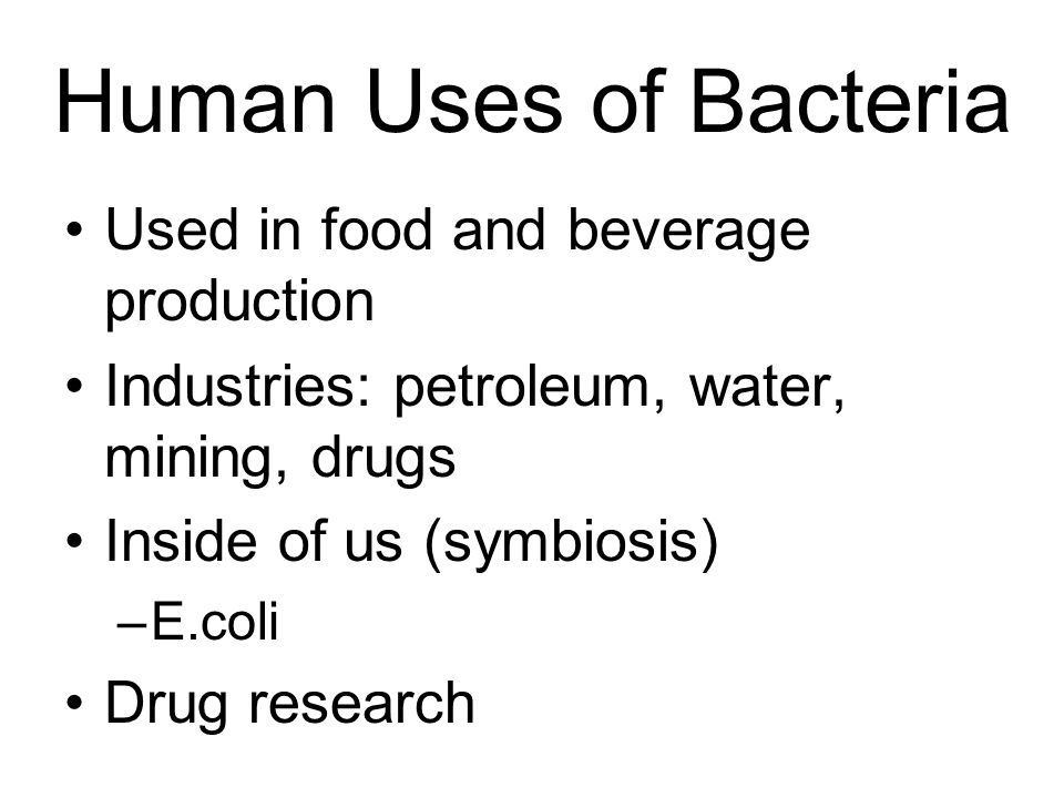 Human Uses of Bacteria Used in food and beverage production