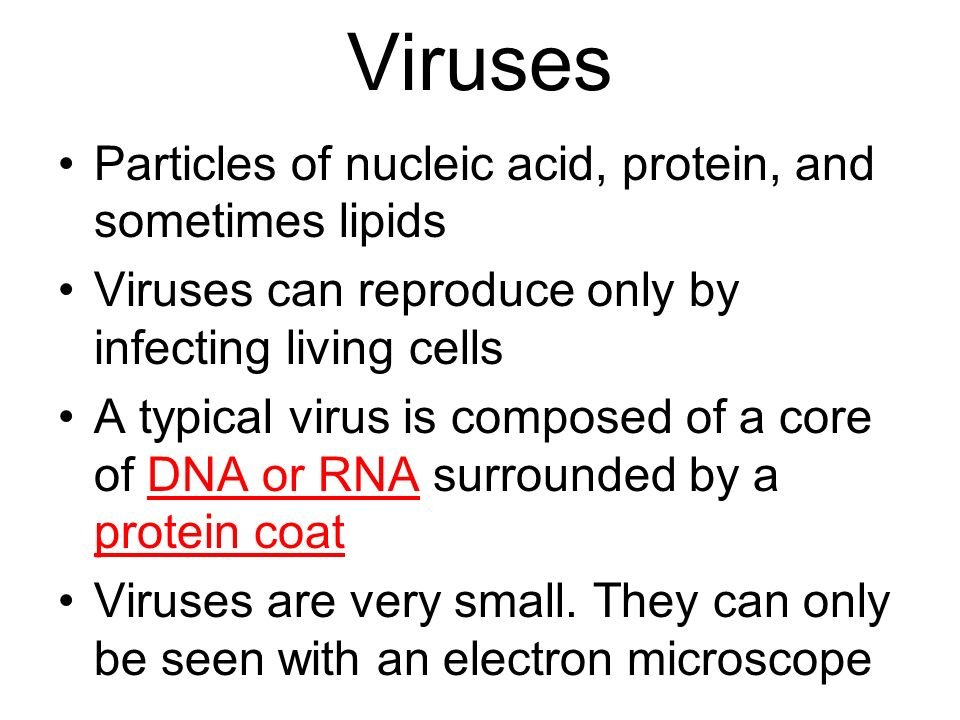 Viruses Particles of nucleic acid, protein, and sometimes lipids