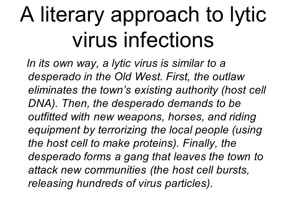 A literary approach to lytic virus infections