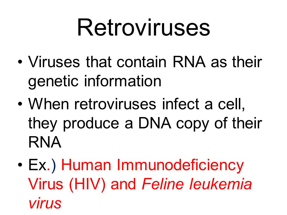 Retroviruses Viruses that contain RNA as their genetic information