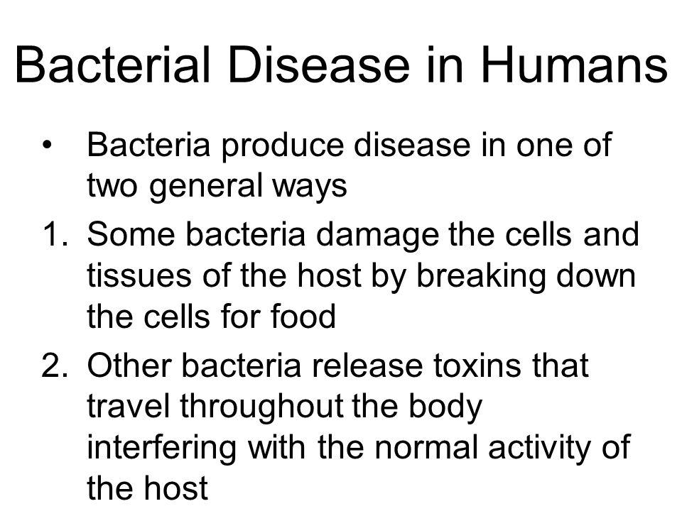 Bacterial Disease in Humans