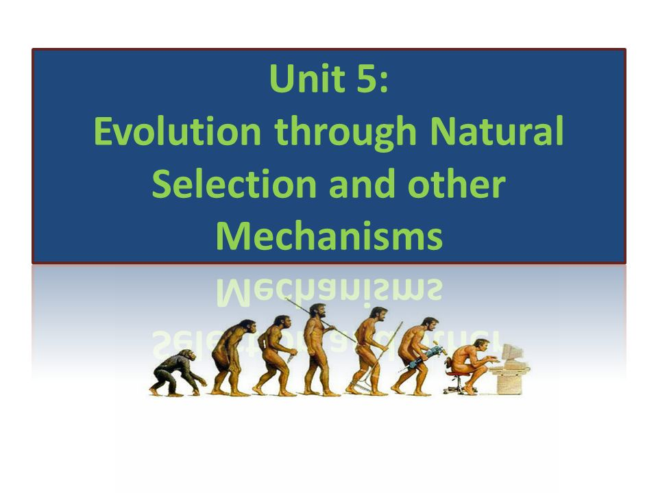 Unit 5: Evolution through Natural Selection and other Mechanisms