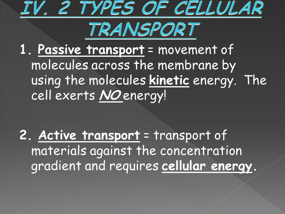 IV. 2 TYPES OF CELLULAR TRANSPORT