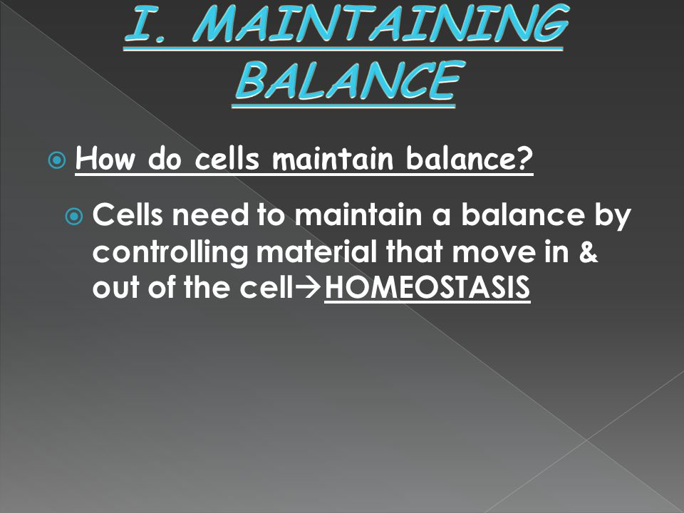 I. MAINTAINING BALANCE How do cells maintain balance
