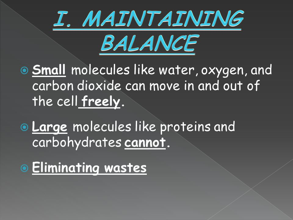 I. MAINTAINING BALANCE Small molecules like water, oxygen, and carbon dioxide can move in and out of the cell freely.