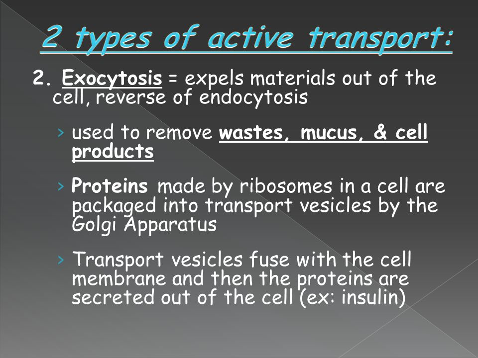 2 types of active transport: