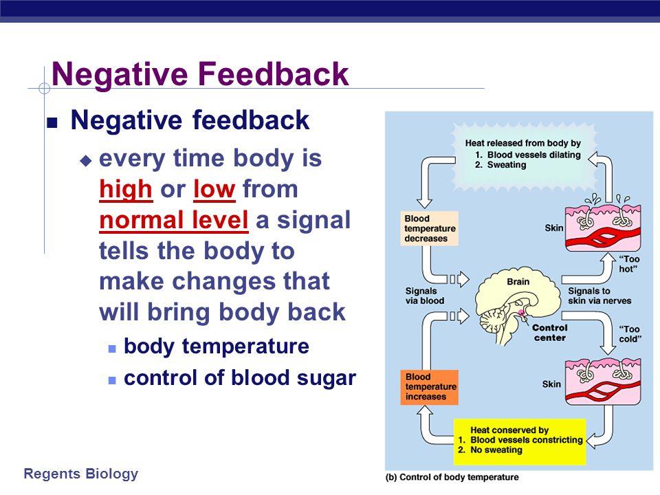 Negative Feedback Negative feedback