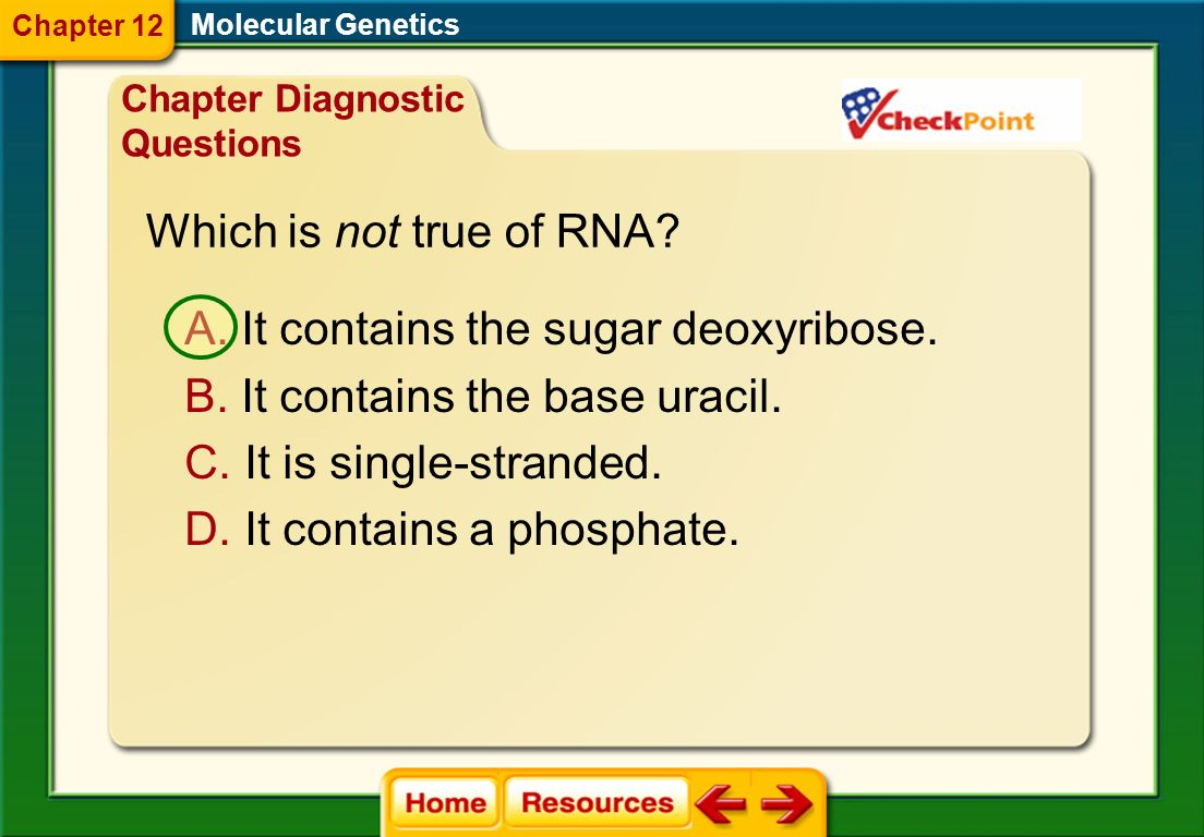 It contains the sugar deoxyribose. It contains the base uracil.