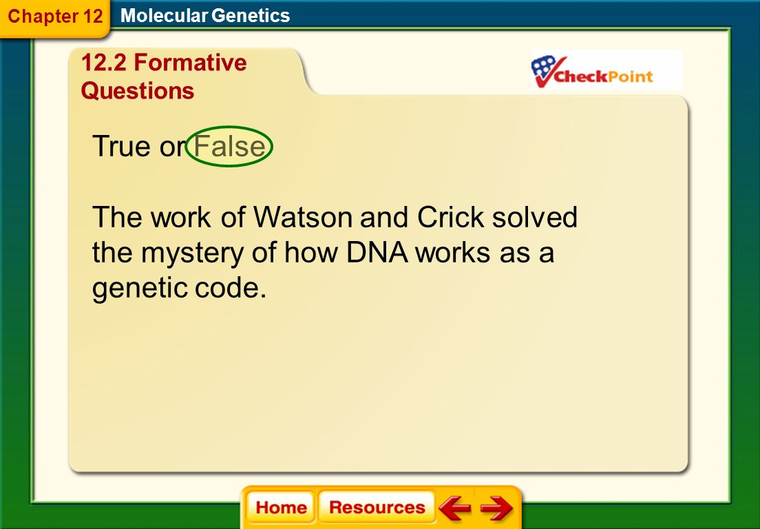 The work of Watson and Crick solved the mystery of how DNA works as a