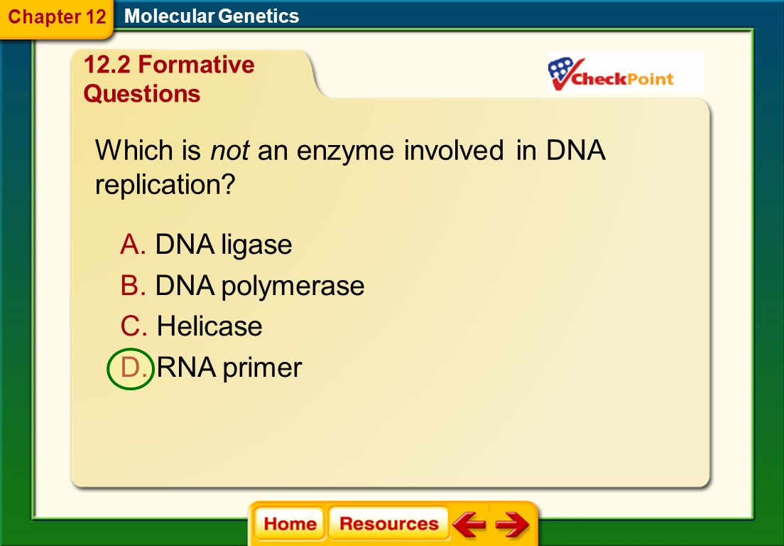 Which is not an enzyme involved in DNA replication