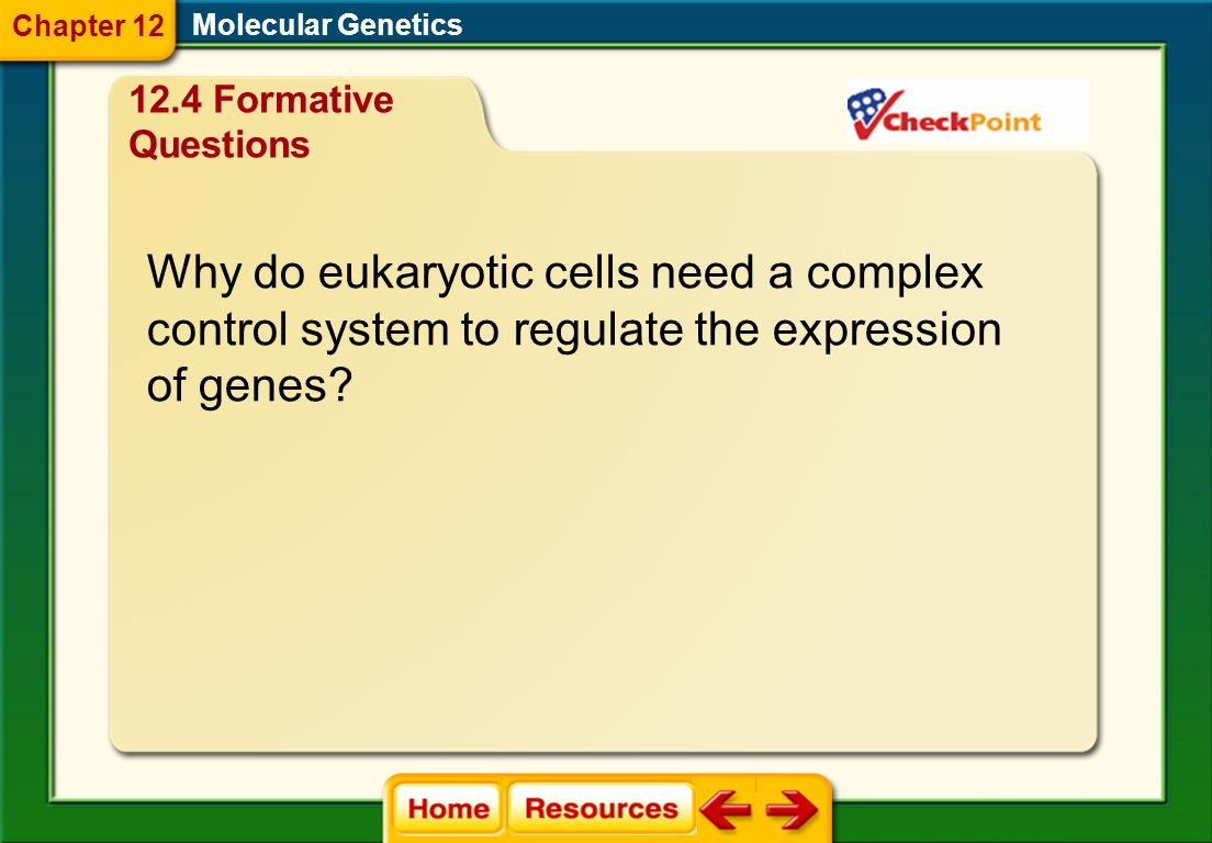 Why do eukaryotic cells need a complex