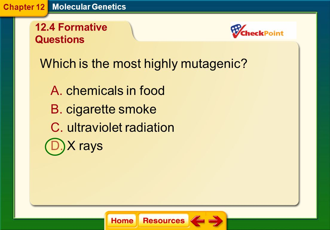 Which is the most highly mutagenic