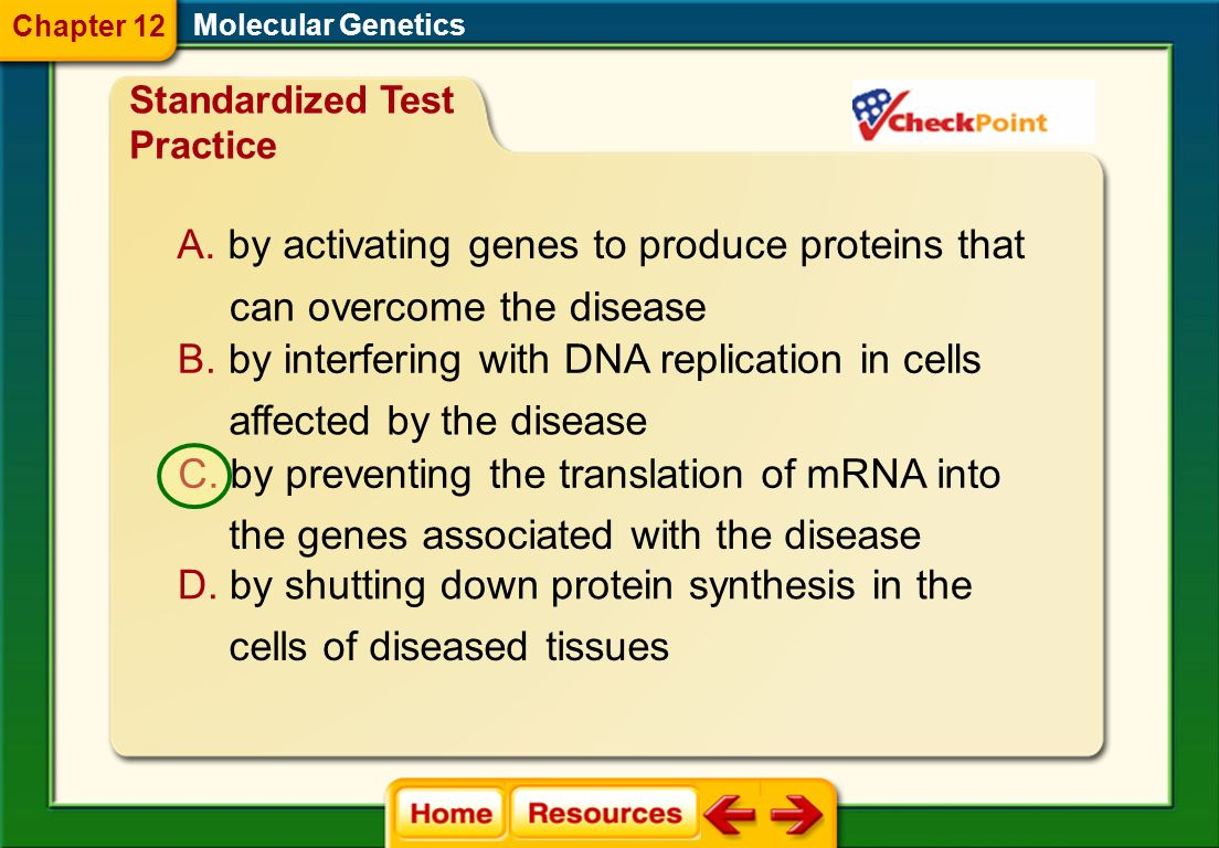 by activating genes to produce proteins that