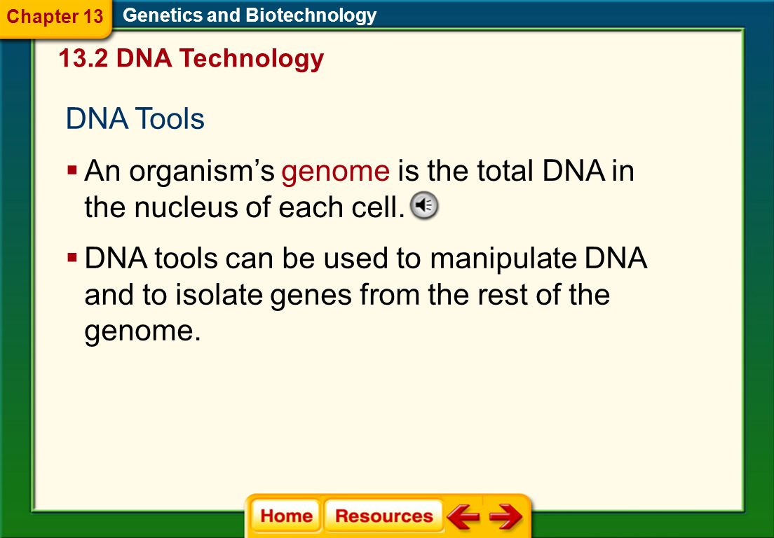 An organism's genome is the total DNA in the nucleus of each cell.