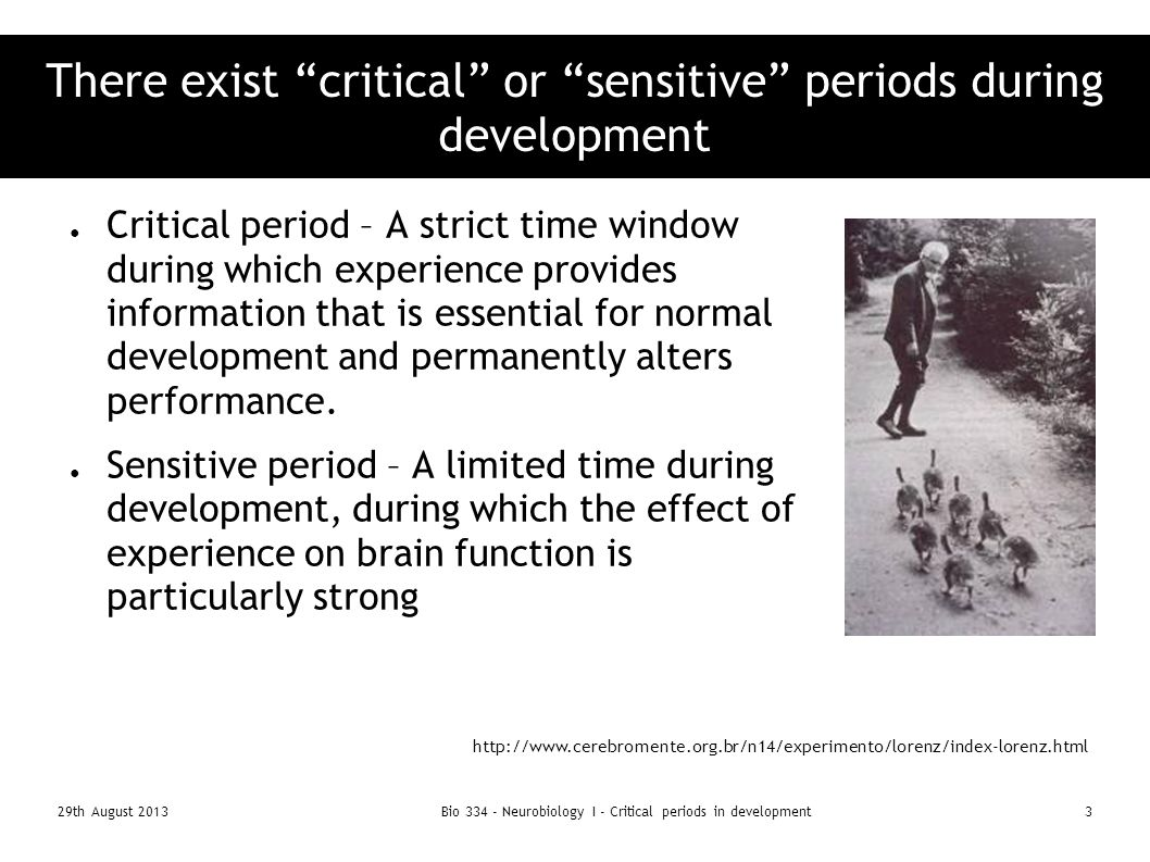 are there critical periods for the There are critical periods during early postnatal development in which imprinting can occur,  if a critical period does indeed exist,.