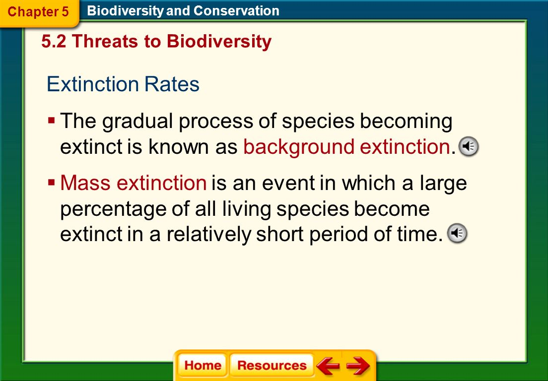 Chapter 5 Biodiversity and Conservation. 5.2 Threats to Biodiversity. Extinction Rates.
