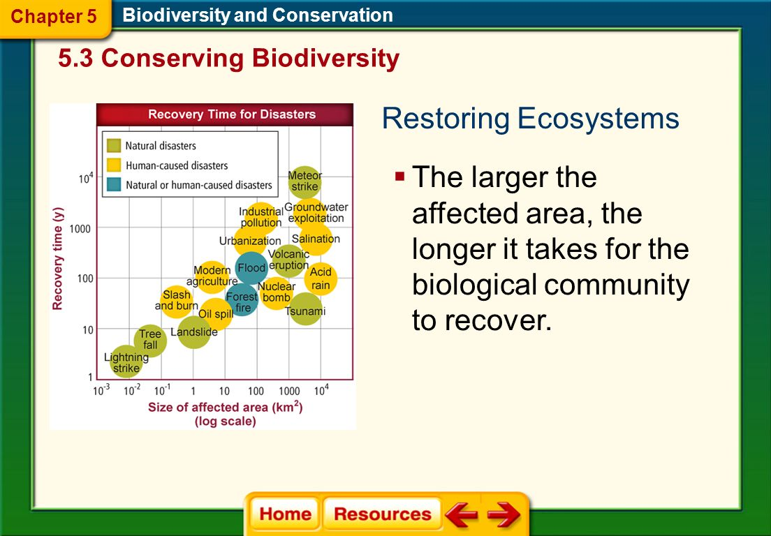 Chapter 5 Biodiversity and Conservation. 5.3 Conserving Biodiversity. Restoring Ecosystems.