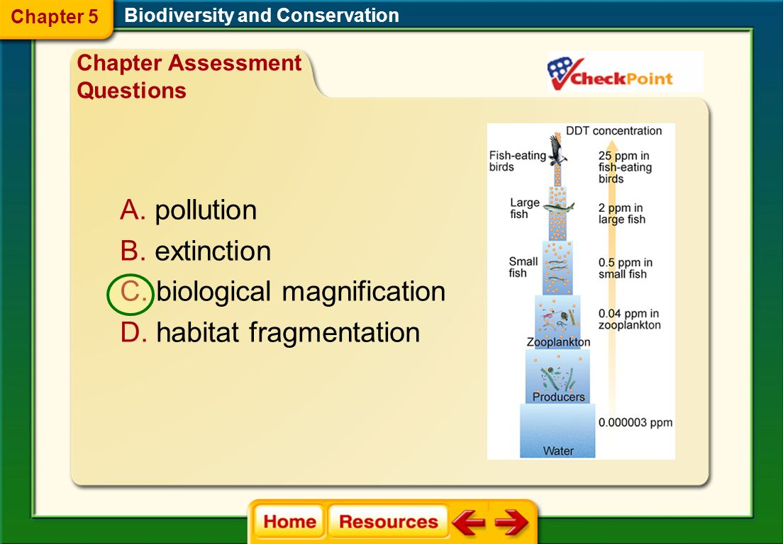 biological magnification habitat fragmentation