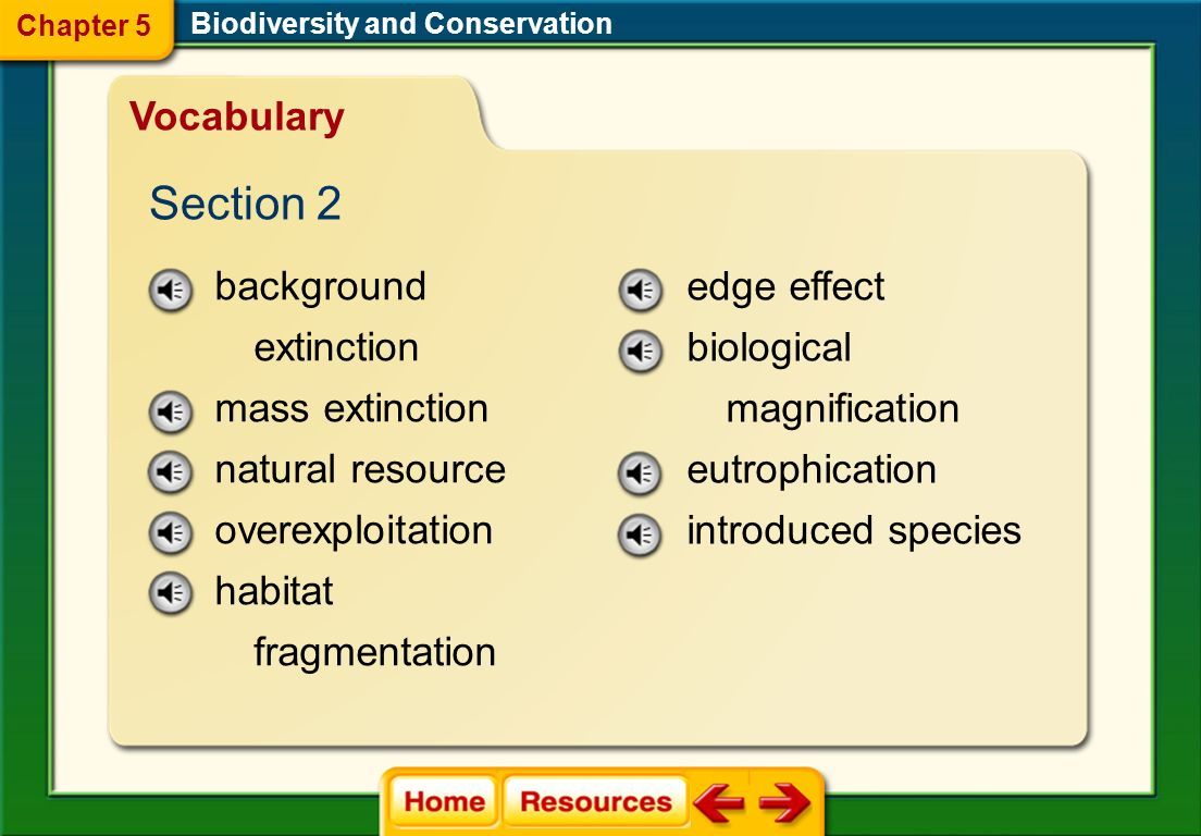 Section 2 Vocabulary background extinction mass extinction