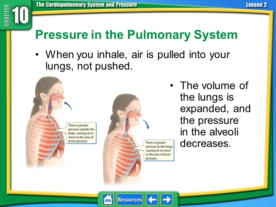 Pressure in the Pulmonary System