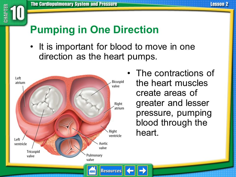 Pumping in One Direction