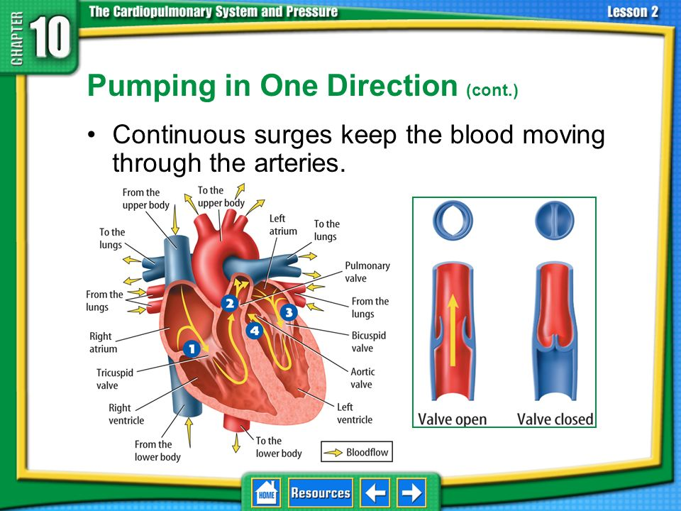 Pumping in One Direction (cont.)