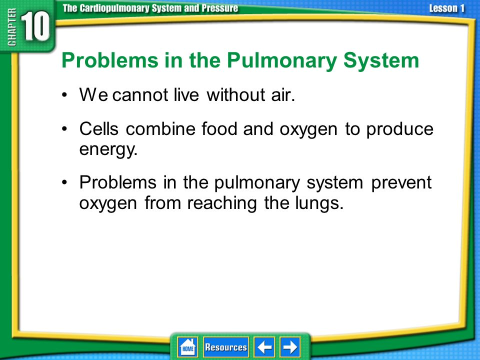 Problems in the Pulmonary System