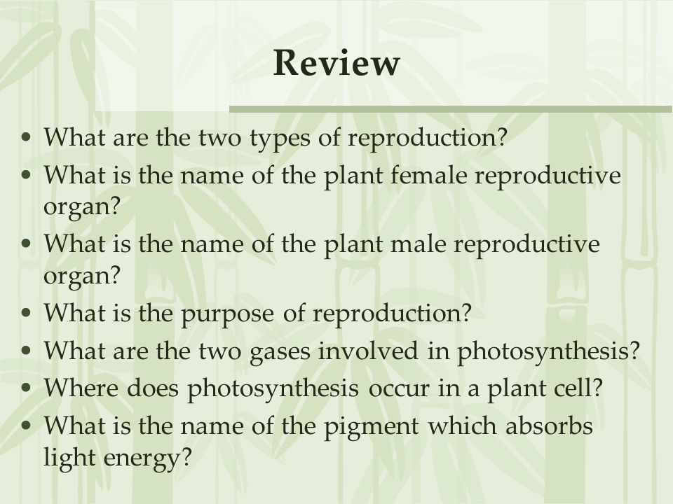 Review What are the two types of reproduction
