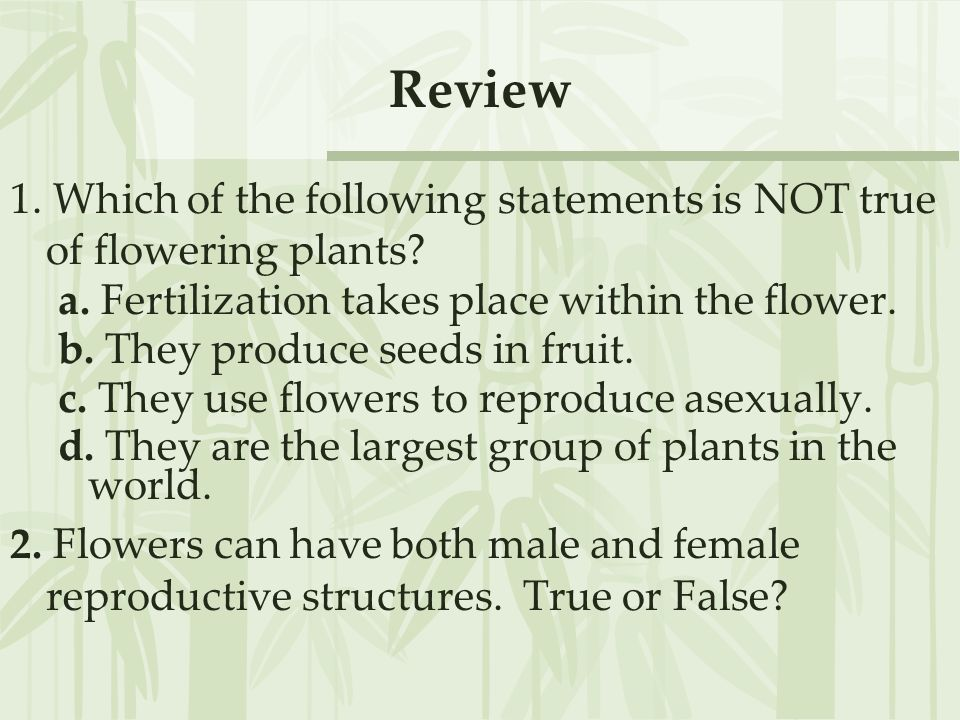 Review 1. Which of the following statements is NOT true of flowering plants a. Fertilization takes place within the flower.