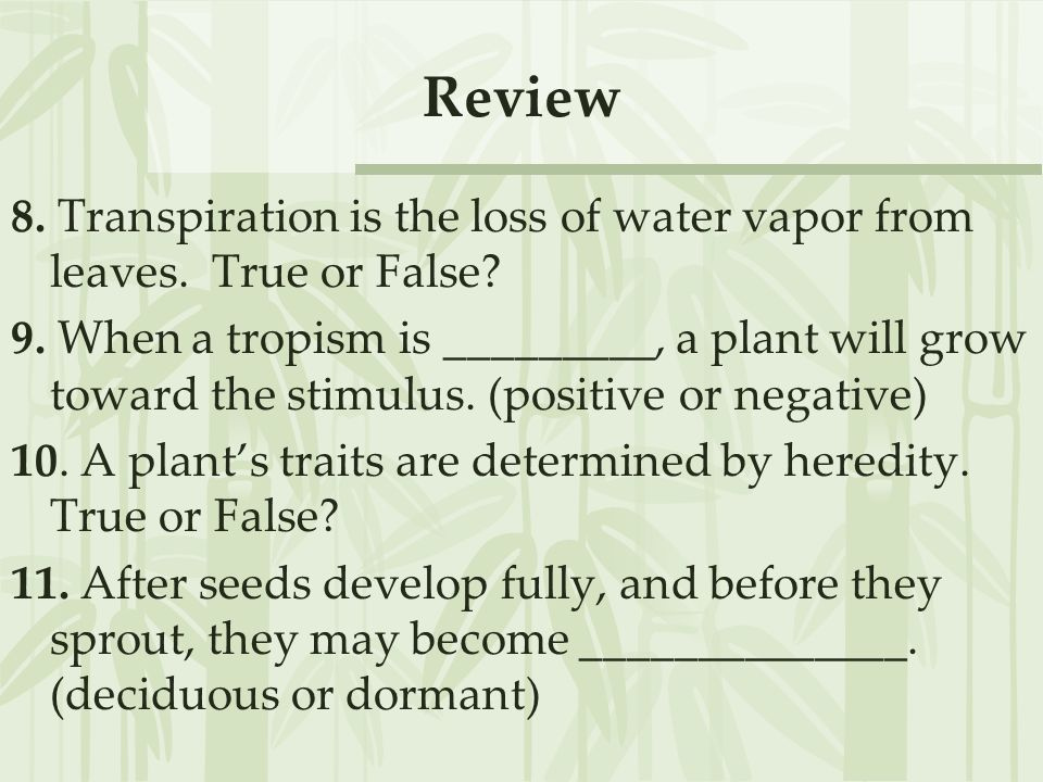 Review 8. Transpiration is the loss of water vapor from leaves. True or False