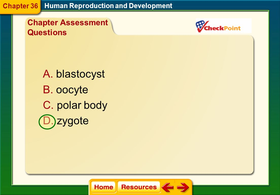 blastocyst oocyte polar body zygote Chapter Assessment Questions