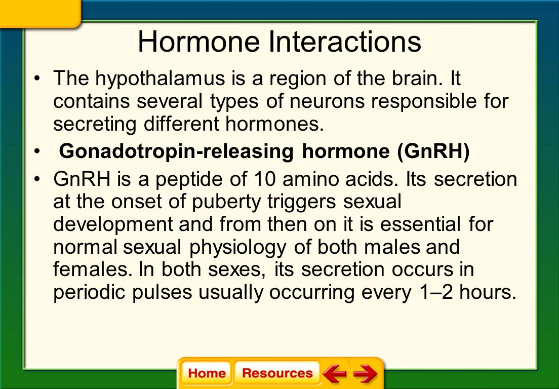 Hormone Interactions The hypothalamus is a region of the brain. It contains several types of neurons responsible for secreting different hormones.