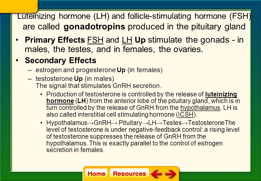 Luteinizing hormone (LH) and follicle-stimulating hormone (FSH) are called gonadotropins produced in the pituitary gland