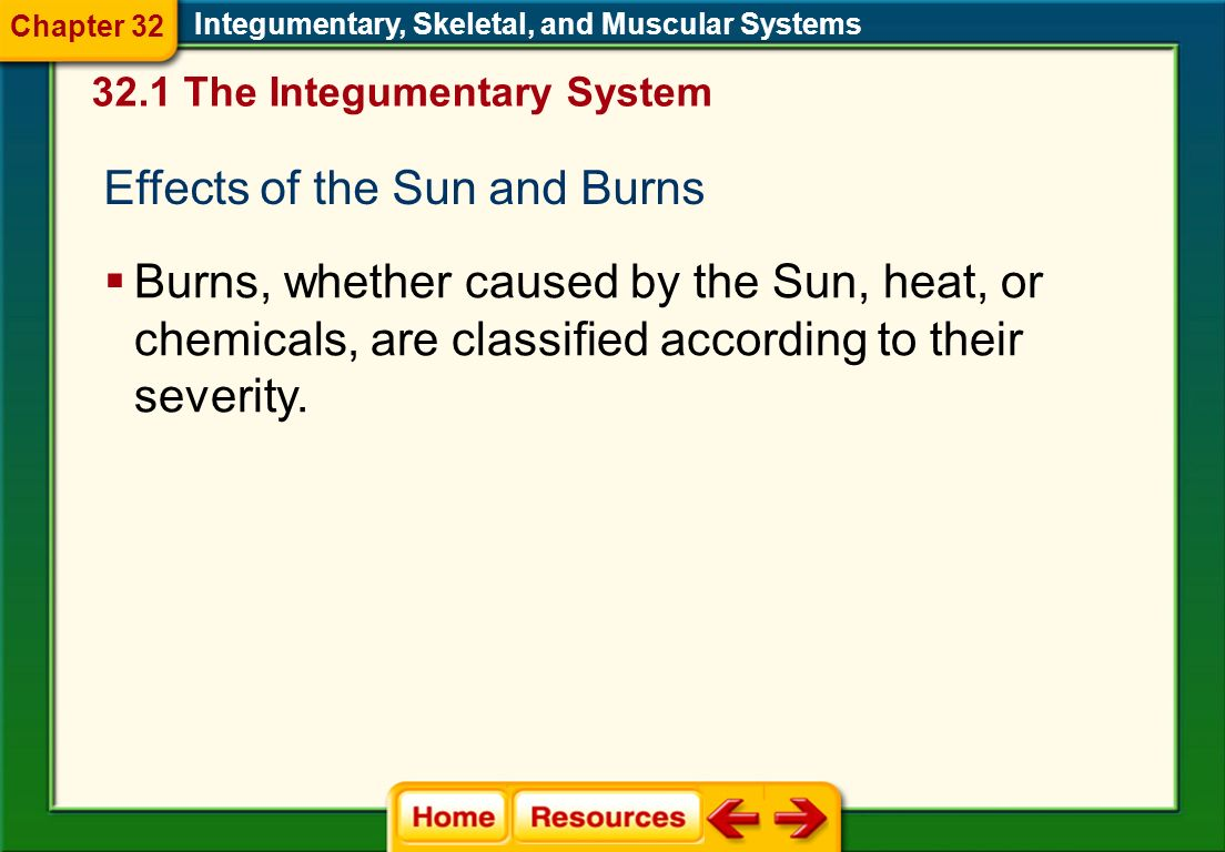 Effects of the Sun and Burns