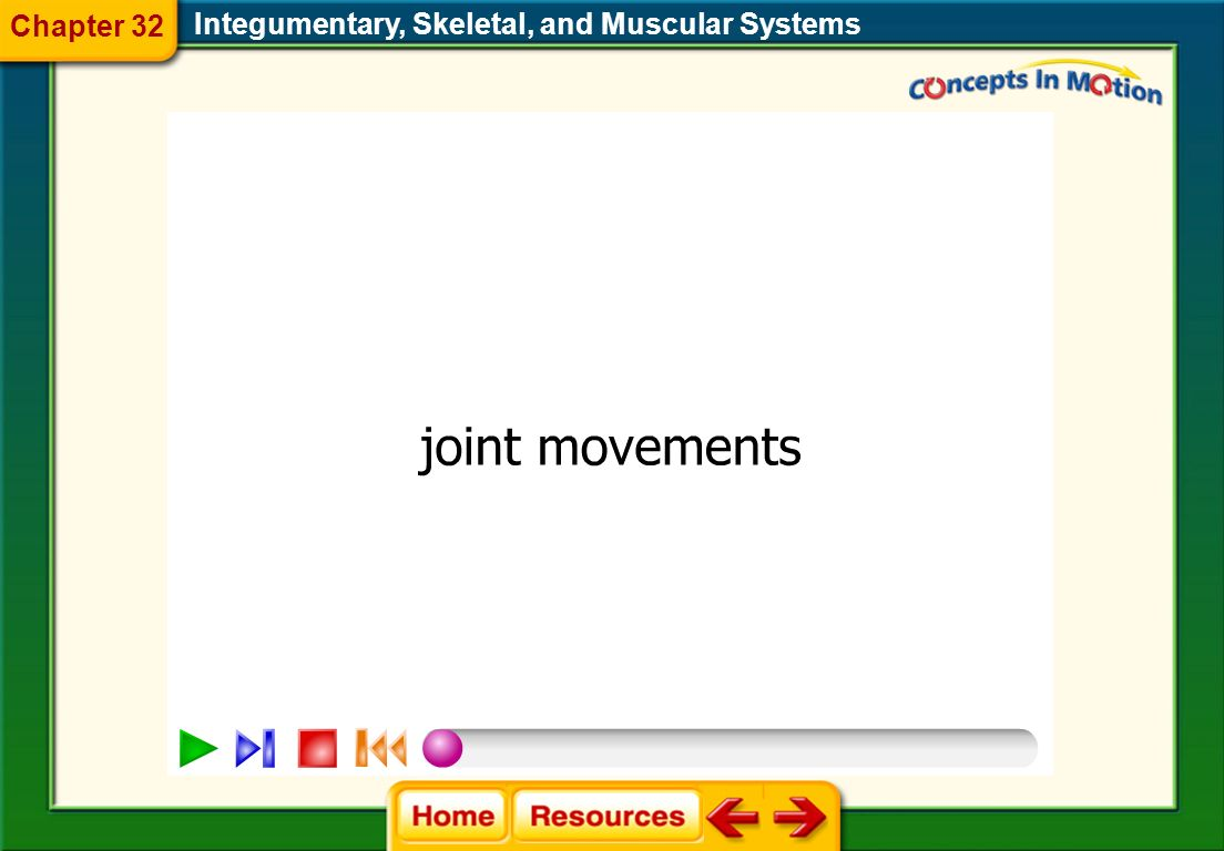 Chapter 32 Integumentary, Skeletal, and Muscular Systems