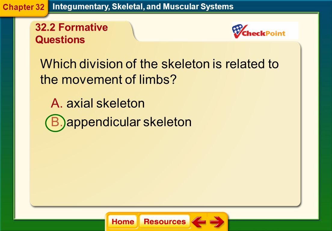 Which division of the skeleton is related to the movement of limbs