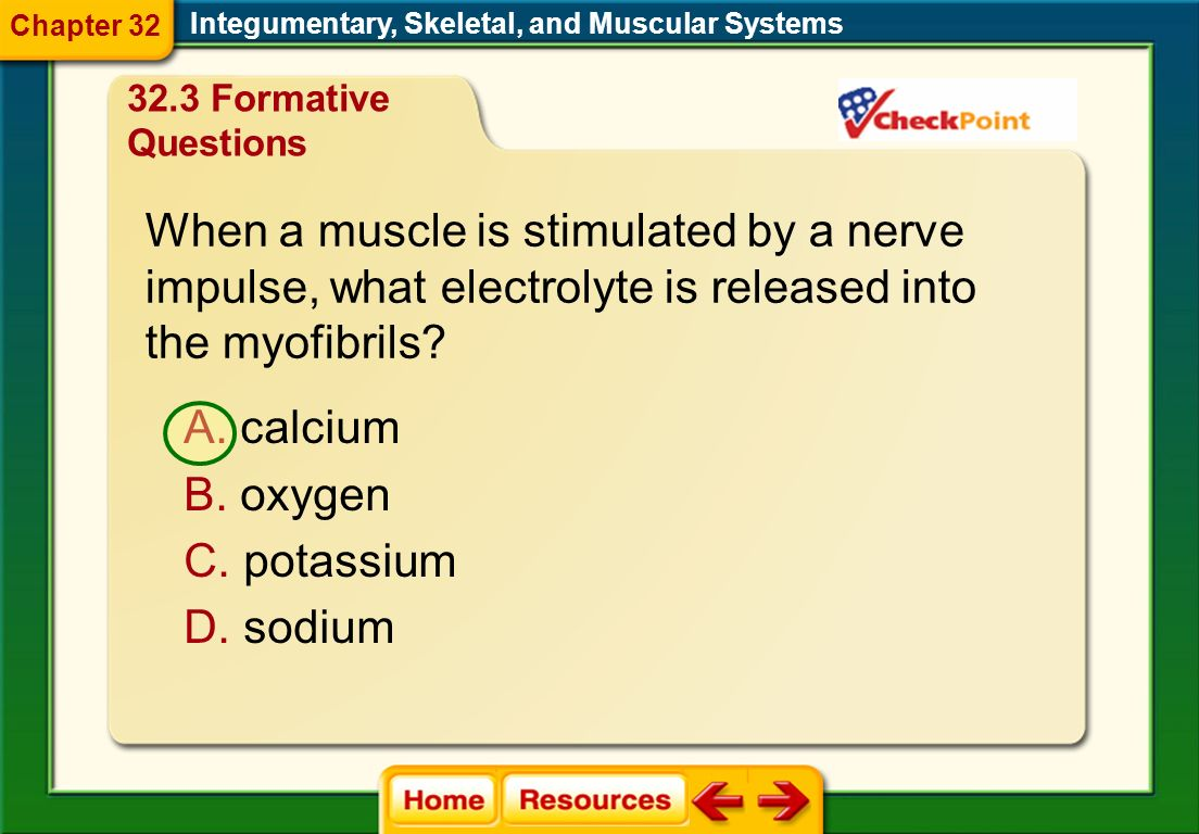 When a muscle is stimulated by a nerve