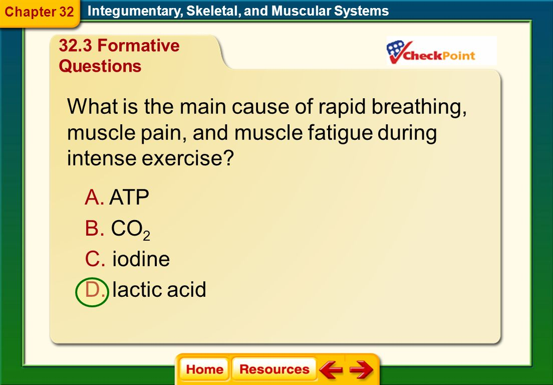 What is the main cause of rapid breathing,