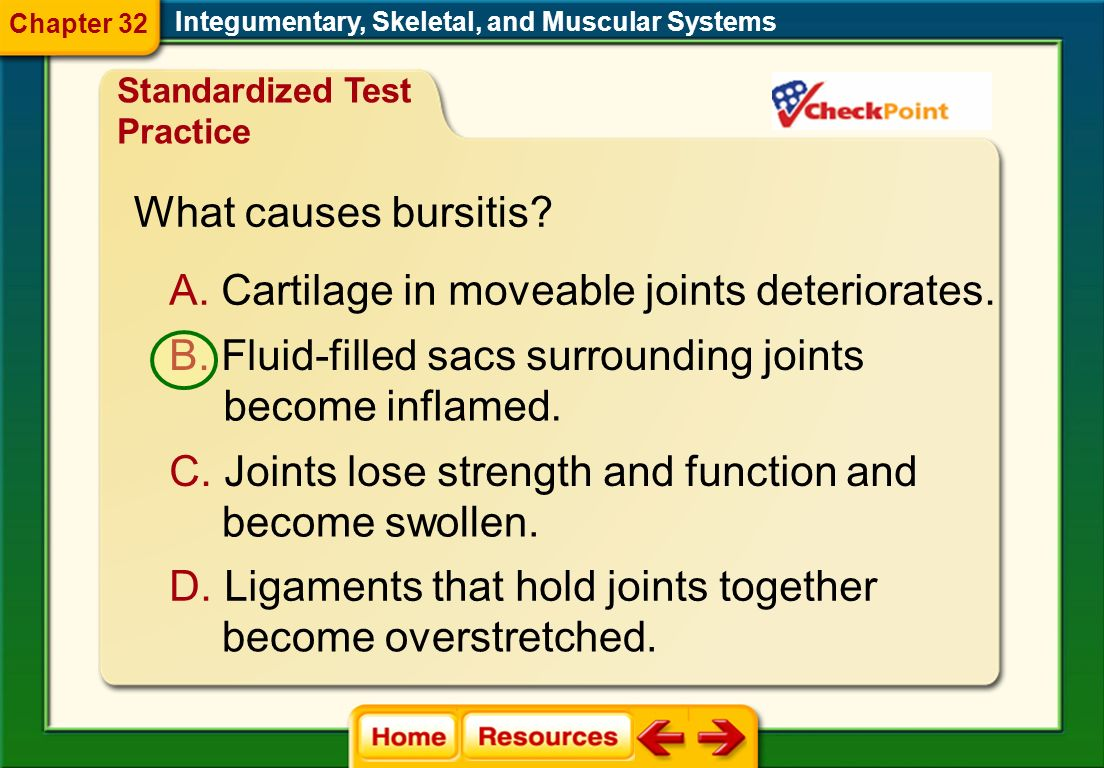 Cartilage in moveable joints deteriorates.