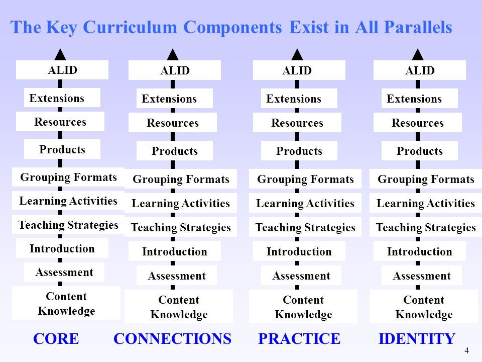 The Key Curriculum Components Exist in All Parallels