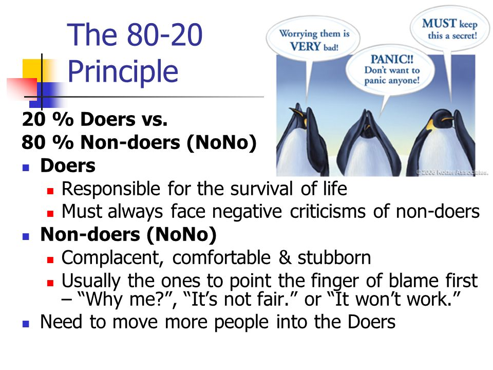 The 80-20 Principle 20 % Doers vs. 80 % Non-doers (NoNo) Doers
