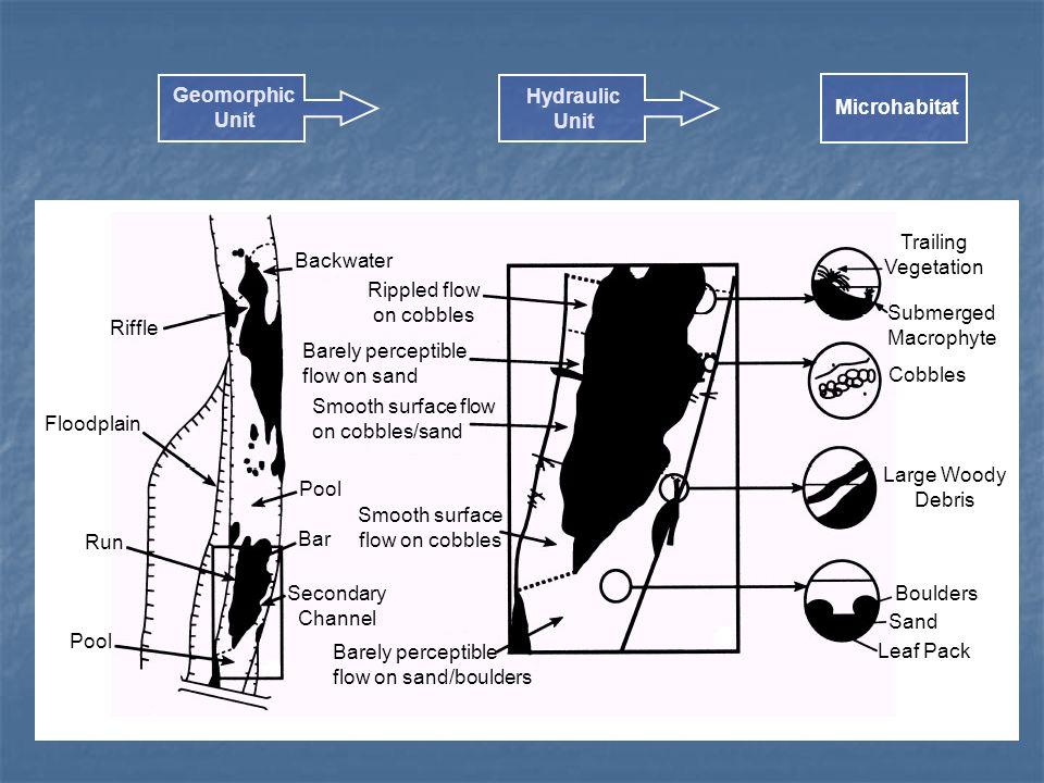 Geomorphic Unit Hydraulic Unit Microhabitat