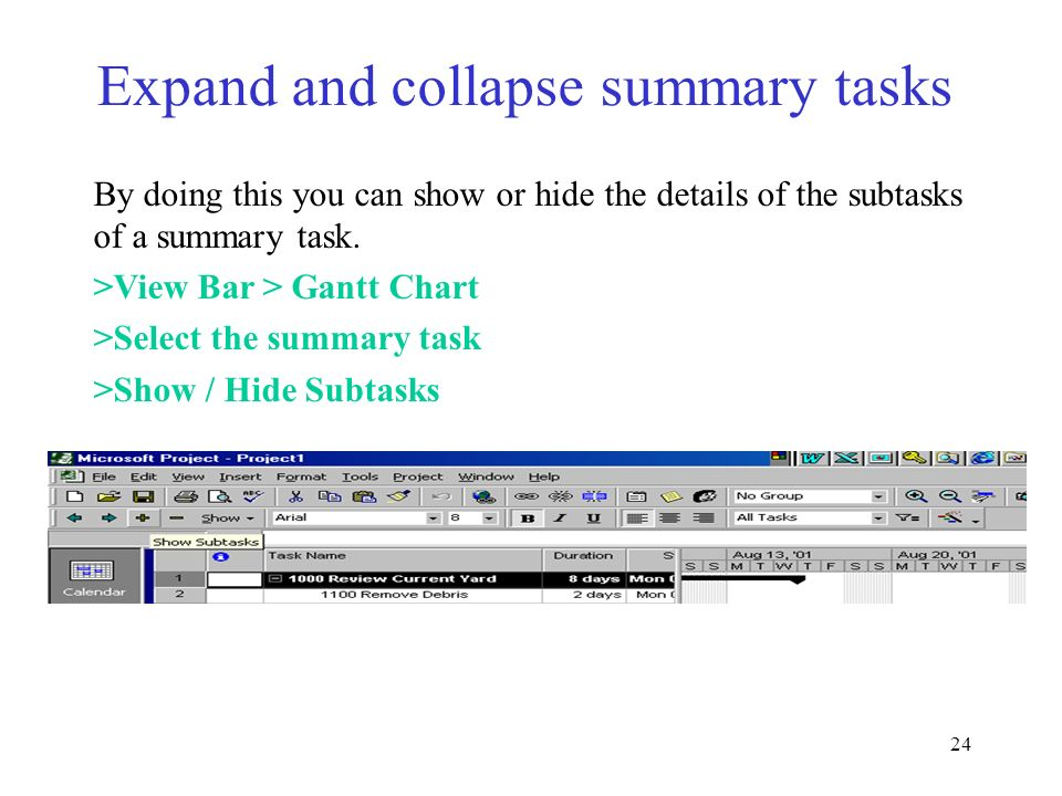 Expand and collapse summary tasks