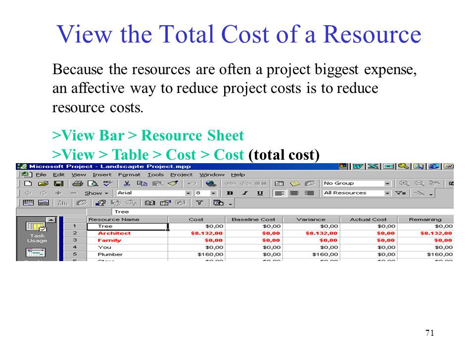 View the Total Cost of a Resource